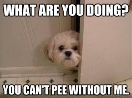 you-cant-pee-without-me.jpg